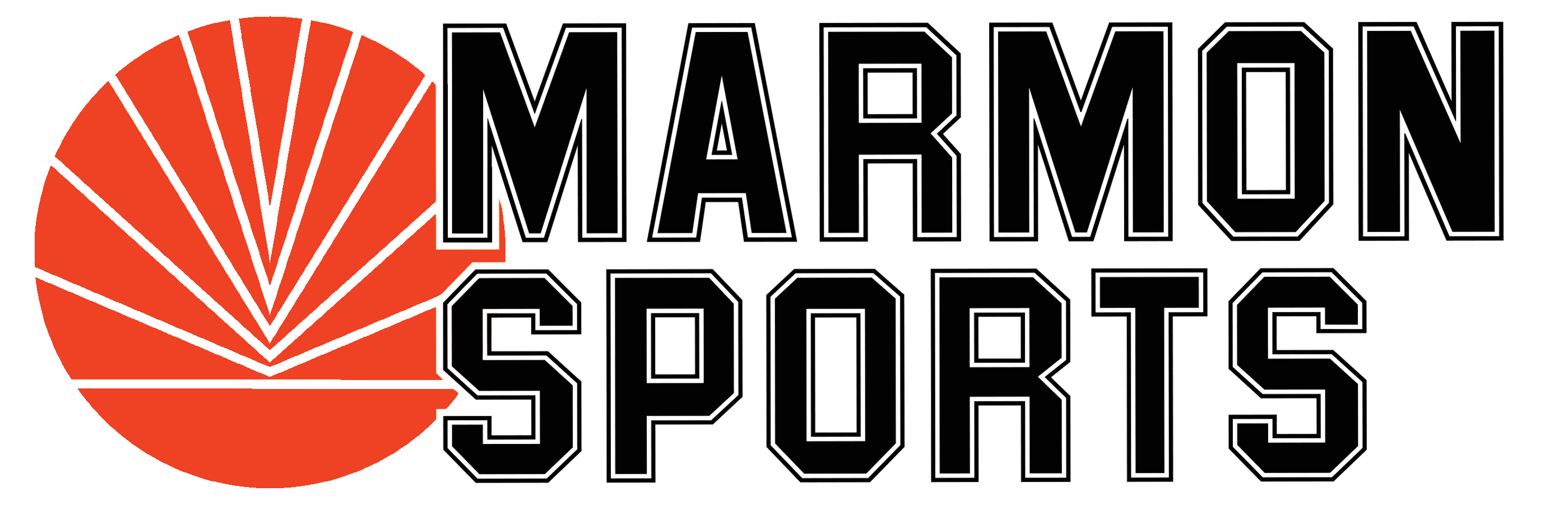 logo ms 2019 test4.png