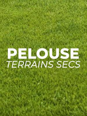 Terrain de football pelouse sèche